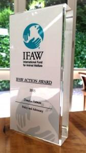 Actual Award 1